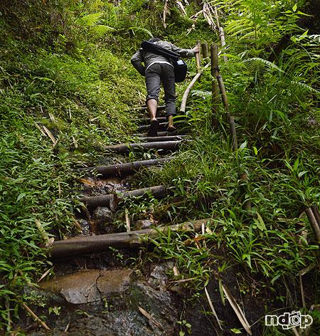 Jalan menuju Singokromo