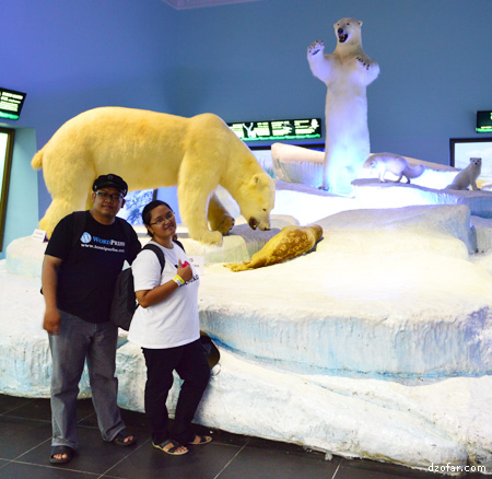 Beruang Kutub di Museum Satwa