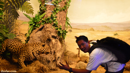 Ndop dan Macan Tutul