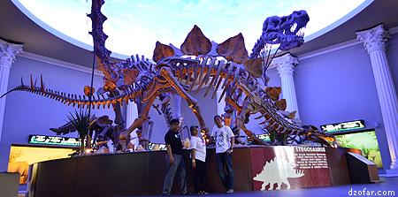Kerangka Dinosaurus di Museum Satwa