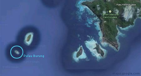 Pulau Burung Karimun jawa