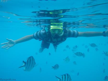 Ndop snorkeling