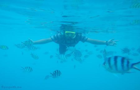 ndop snorkeling lagi