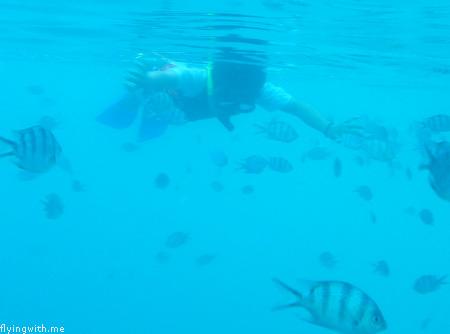 Aryan Snorkeling