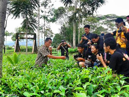 Perkebunan Teh Tambi bersama bloggers