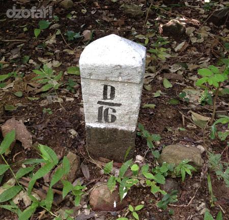 Patokan D16