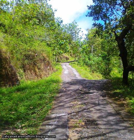 Jalan menuju Banyunibo