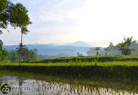 Pemadangan Gunung di Kalisari