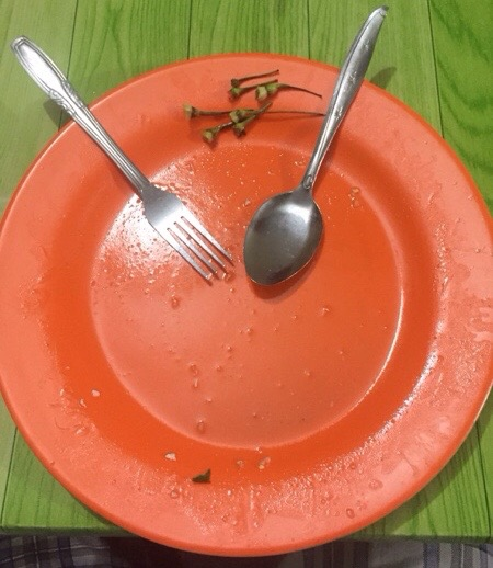 Makan dihabiskan