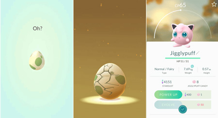 Egg Hatching