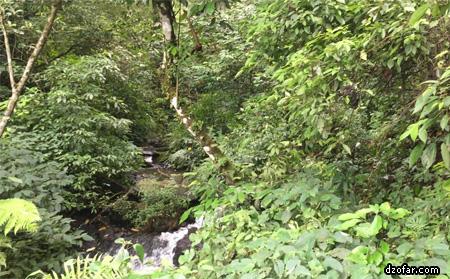 Sungai di Sri Gunting