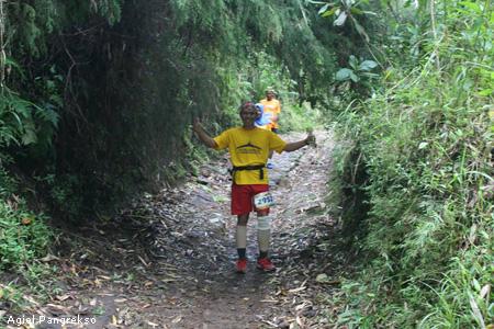 melewati hutan bambu