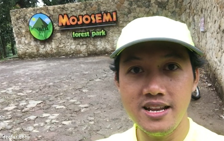 Ndop di Mojosemi Forest park