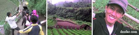 Perjalanan menuju Air Terjun Tirtosari