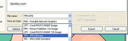 pilih File of type: JPEG Bitmaps